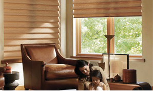 Hunter Douglas Powerview is safe for children and pets